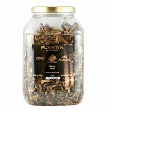 plantin dried porcini g