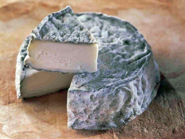 Selles Sur Cher Goats Cheese
