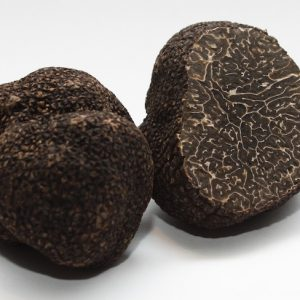 fresh black Winter Perigord truffles