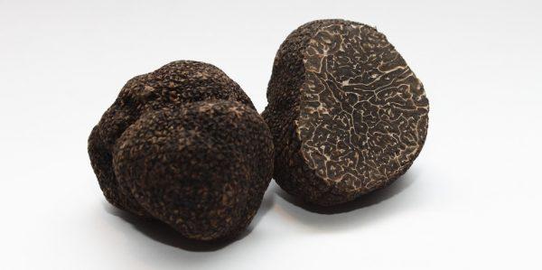 fresh black Winter Perigord truffles
