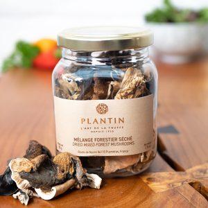 Plantin - Dried Wild Forest Mushrooms 50g jar